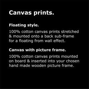 framed canvas prints